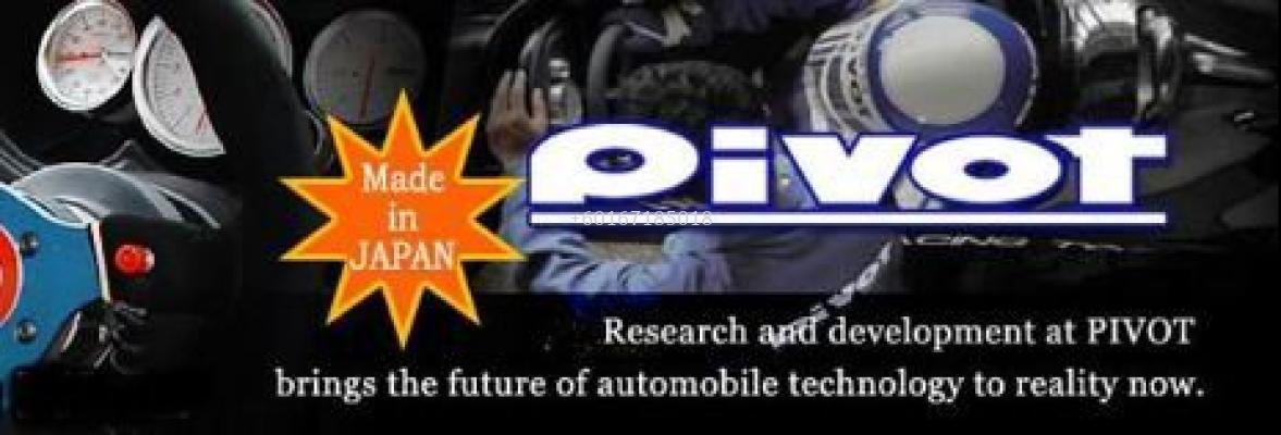 PIVOT 3 DRIVE FLAT THROTTLE CONTROLLER for BMW E39