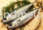 Frozen Saba Mackeral 400/600 or 600/800gm挪威鲭鱼 FROZEN FISH ITEM