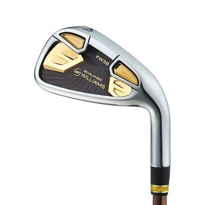 Williams Qualifier Gold Series Irons Graphite