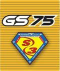 True Temper GS75
