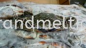 Frozen Flower Crab  SEAFOOD PRODUCT