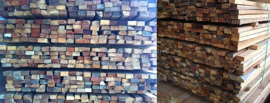 Mix Untreated Wood ��ľ / ʲľ