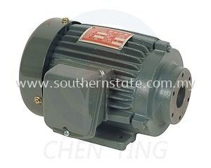 Cast Iron Horizontal Motor