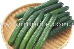 Japanese Cucumber High Land Vegetables