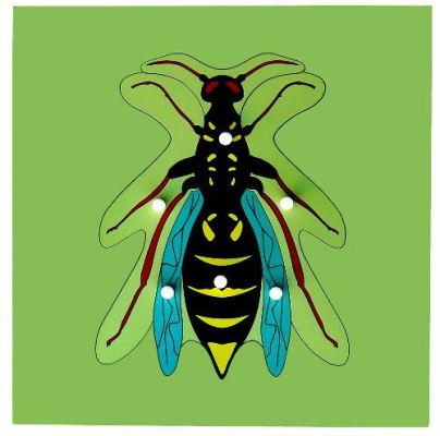 KB020 Insect Puzzle - Housefly