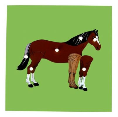 KB014 Animal Puzzle - Horse and Skeleton