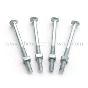 Carriage Bolt & Nuts