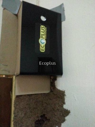 Ecoplus Termite��s Colony Elimination Expert