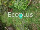 Ecoplus Termite's Baiting Prevention System Outdoor or Garden Ecoplus Termite's Baiting Prevention System Installation Photo