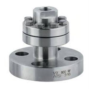Double Flange Diaphragm Seals