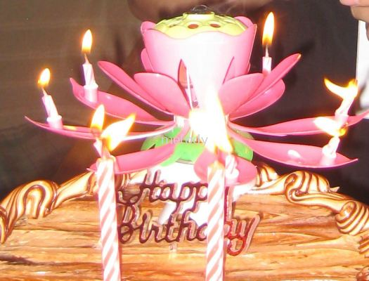 Music Blossom Lotus Flower Candle -2002 0101 01