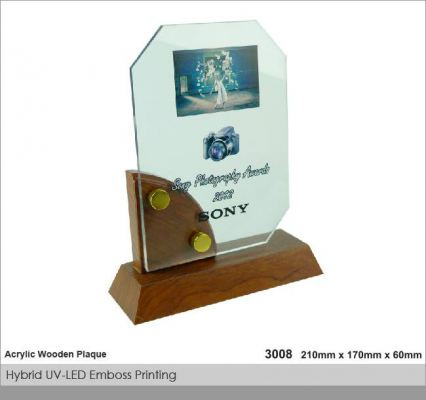 Crystal Plaque / Awards (CT35)