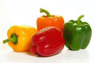 Bell Peppers and Capsicum