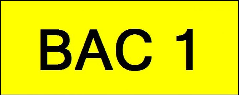 Number Plate BAC1