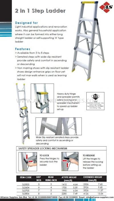 Two-In-One Step Ladder