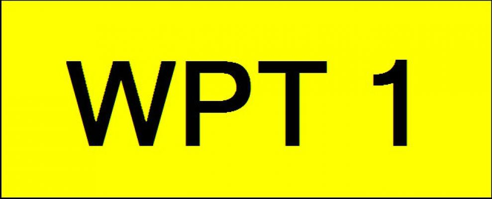 VVIP Number Plate (WPT1)