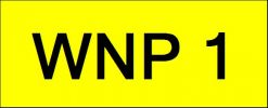 Number Plate WNP1 Wilayah Golden Plate