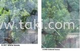 K  037  &  K  038 Printed PET Glass Film K Series Glass Film