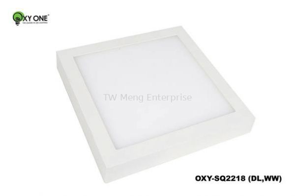 LED Surface Down Light - OXY-SQ2218