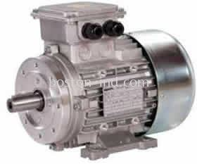Elprom Single Phase Explosion Proof Motor