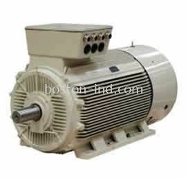 ELPROM INDUCTION MOTOR