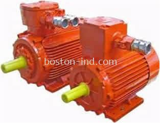 ELPROM EXPLOSION PROOF MOTOR Ex d (e)