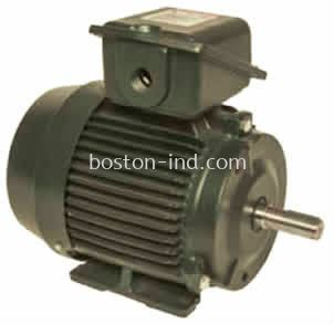 Hensen Totally Enclosed Fan Cooled Motor (Top Mount) IEC & NEMA STRANDRAD PREMIUM HIGH EFF