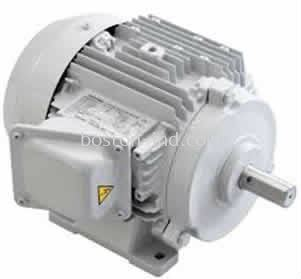 Hensen Induction Motor IEC & NEMA STANDRAD