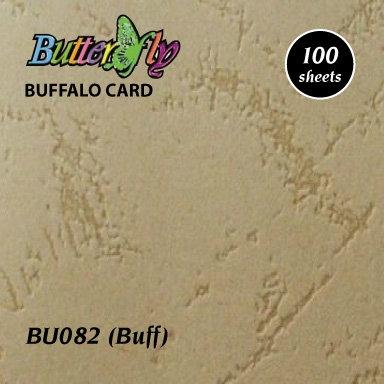 A3 Buffalo Card - Buff