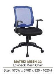 Mesh 22