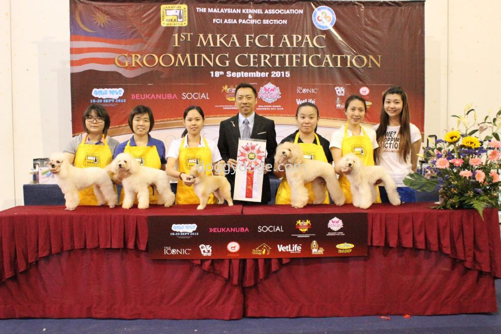 1st MKA FCI APAC GROOMING CERTIFICATION CHAMPION 5th Category