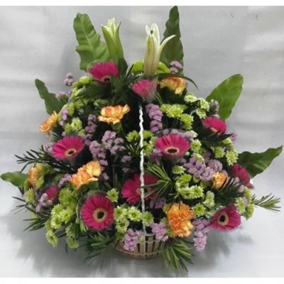 Geberas, Lily, Canation Spray Basket Arrangement (BA-085)