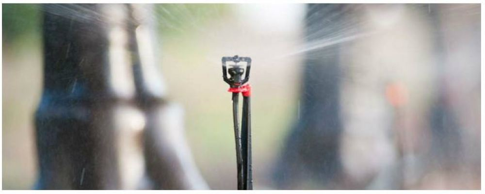 Rondo Micro Sprinkler, RFR Flow Regulated Micro Sprinkler