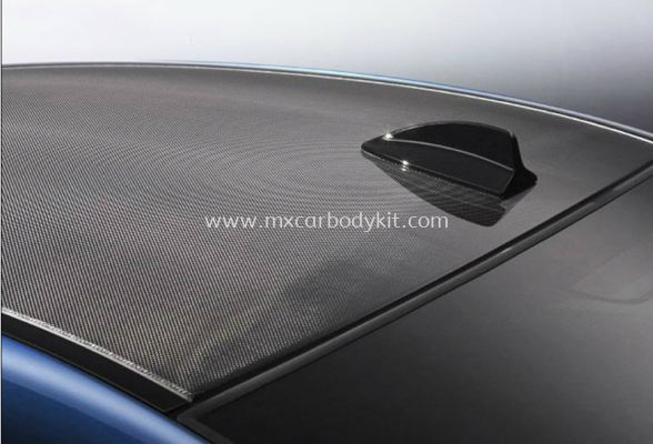 BMW SHARK FIN ANTENNA CARBON FIBER