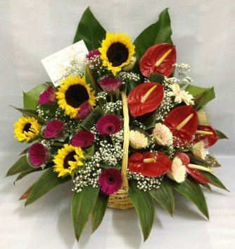 Sunflower, Geberas, Athurium Basket Arrangement (BA-068)