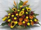 Sunflower, Bird Of Paradise, Geberas Basket Arrangement (BA-086) One Side Arrangement Basket Arrangement