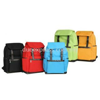 Stylish Laptop backpack (B259)