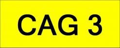 Number Plate CAG3 VVIP Plate