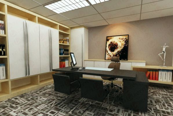 Exclusive design for Director room