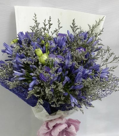 Agapanthus Eustomas Bouquet (HB-310)