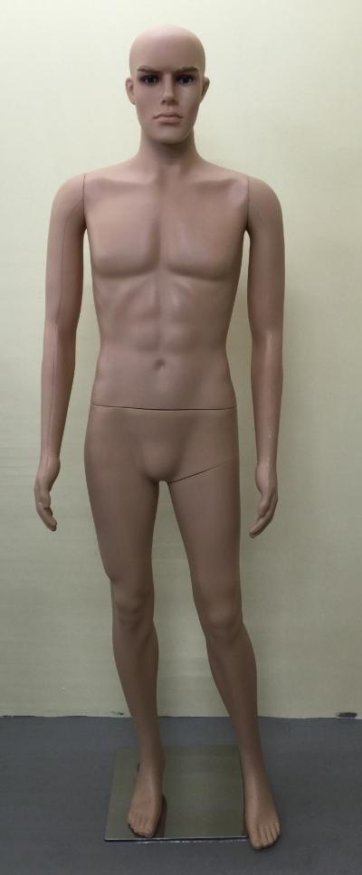 13361-M11 Plastic Male Mannequin