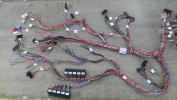 Bus Cable Automotive Wire Harness