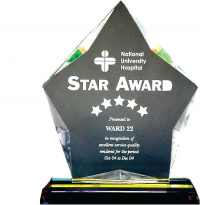 Personalized Exclusive Crystal Plaques Souvenirs Awards ICA110 014