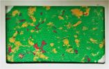 Green Yellow with Red Forest Natural Colors Multi-color Paint