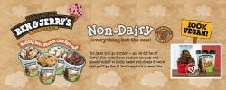 NEW!! Ben & Jerry Non Dairy ice cream