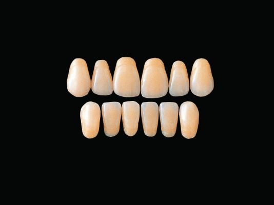Hard Resin Teeth (SS3-SS6)