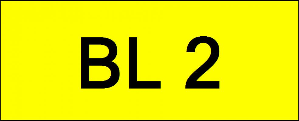 Superb Classic Number Plate (BL2)