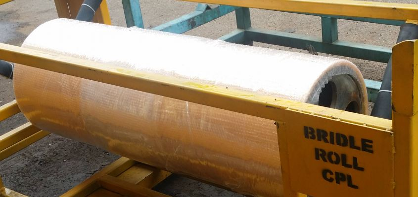 Bridle Roller for Steel Mill