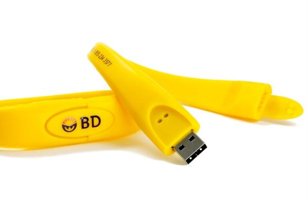 USB flash drive wristband wristii 2 pin