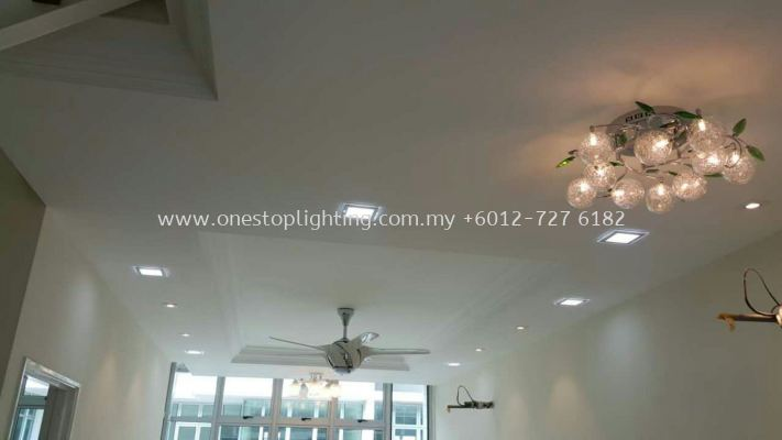 Plaster Ceiling Offer